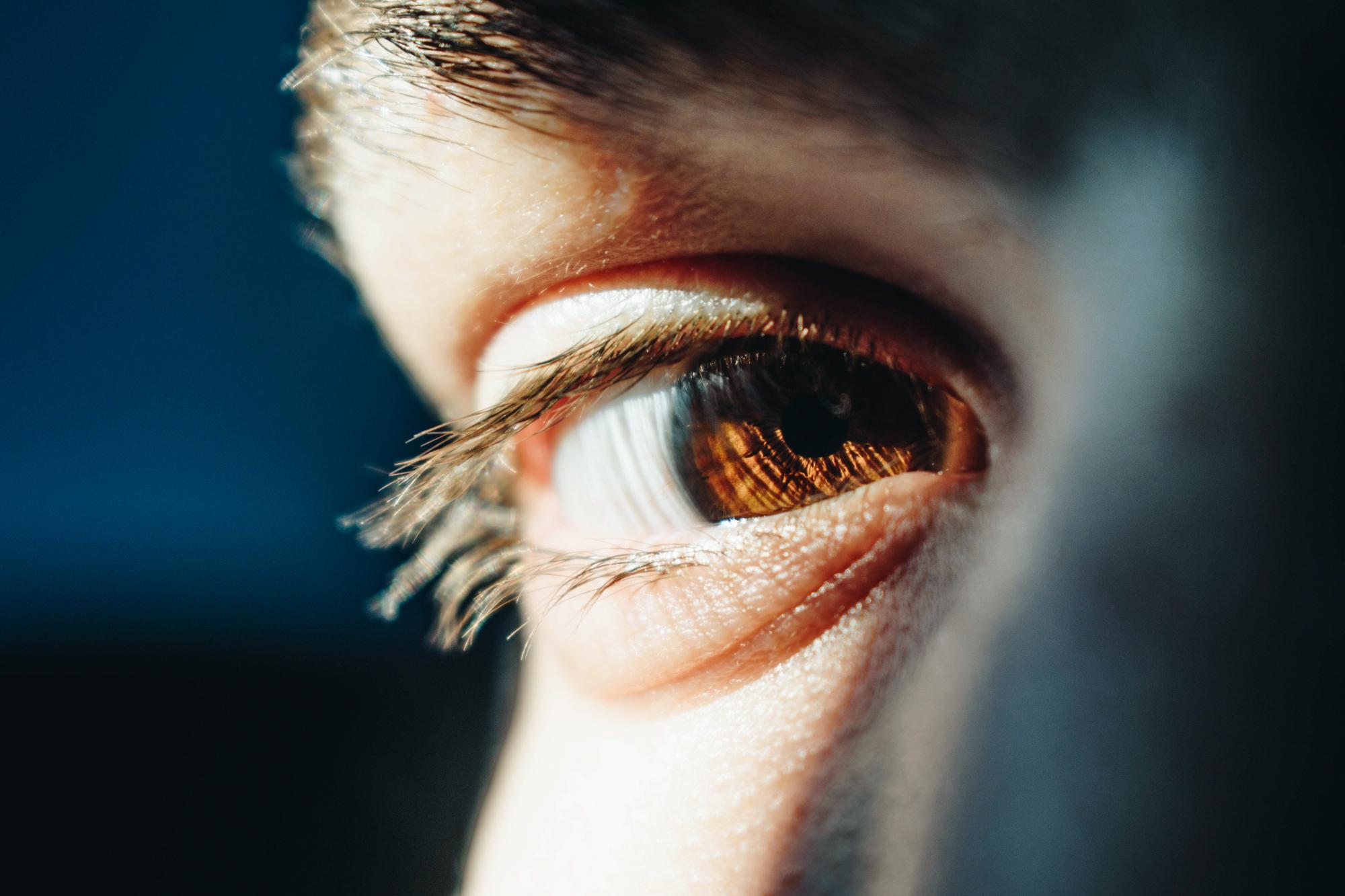 L'oeil : capteur oculaire et posture